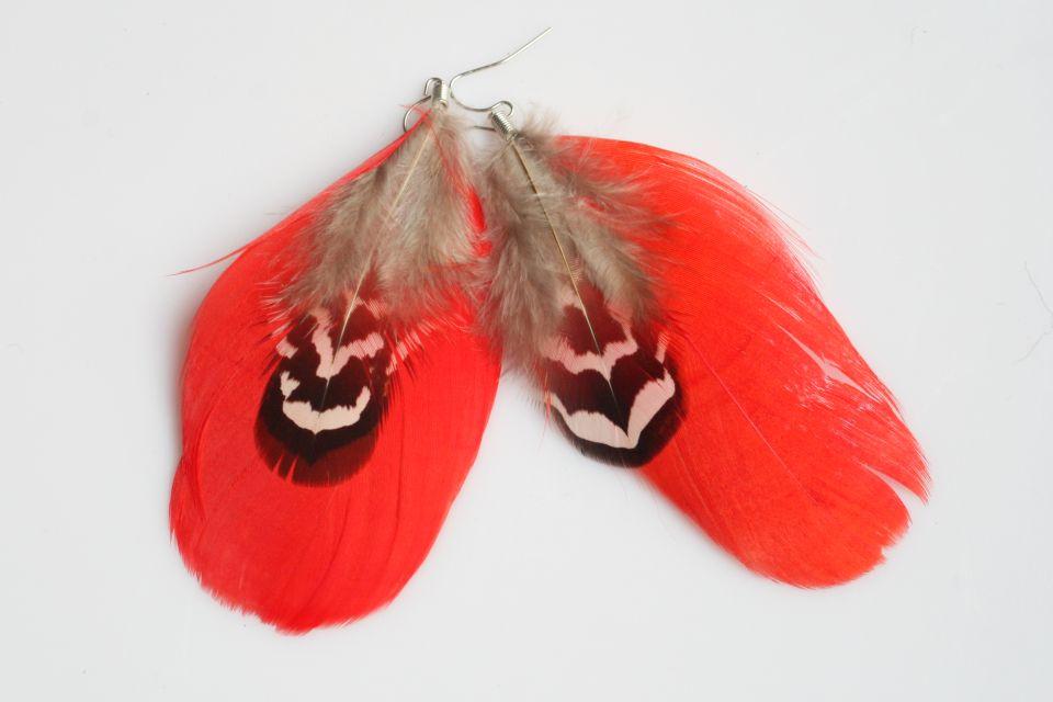 rote Feder  (Schmuck: Kreativ-Ohrringe)